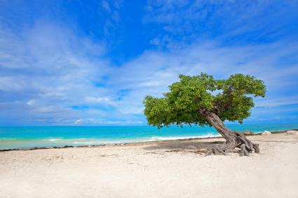 Top Beach Destinations Tripadvisor S