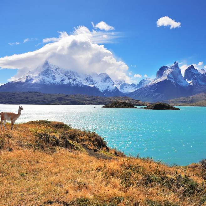 https://www.travelersjoy.com/blog/Chile-Patagonia-honeymoon.jpg