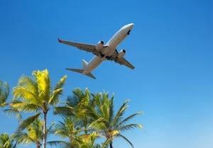 airplanepalms.jpg