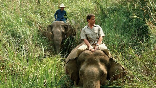 Four-Seasons-Elephant-Trekking-Thailand.jpeg