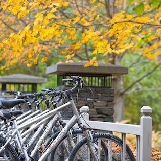 Fall_Bikes_Twin_Farms.jpg