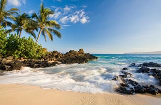 tropical_Maui_1.jpg