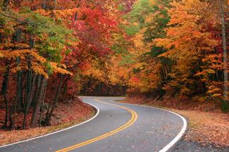 fall_foliage_01.jpg