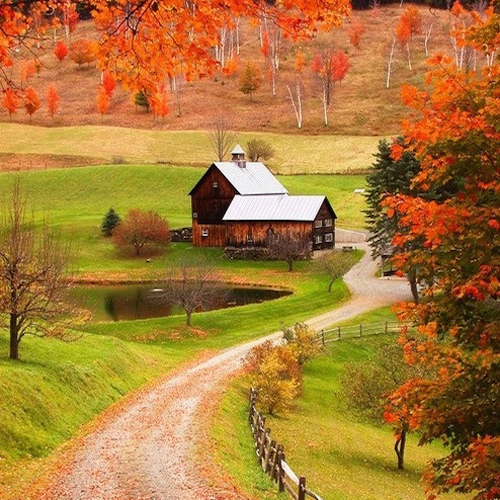 woodstock_farm_vermont_fall-1.jpg