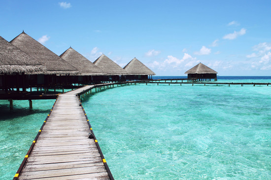 overwater_bungalow_honeymoon_poll-01.jpg
