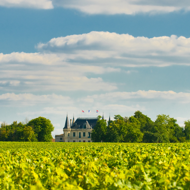 bordeaux_chateau_vineyard_margaux_france.jpg