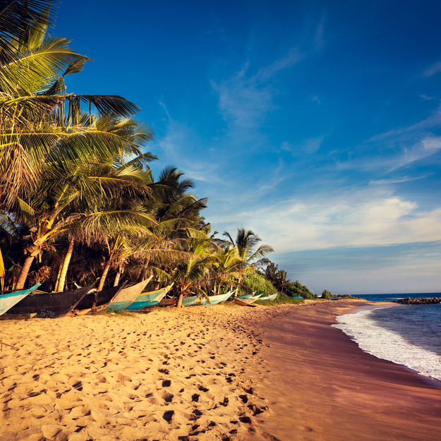 2019_honeymoon_destinations_sri_lanka.jpg