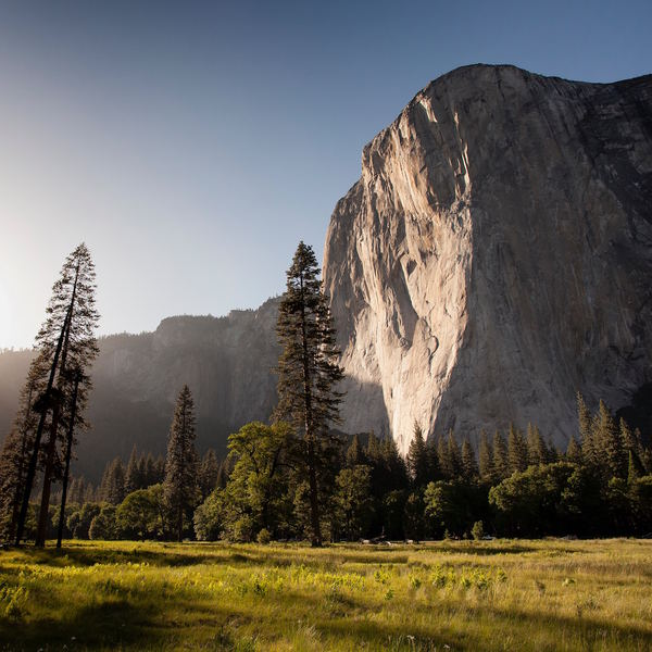 yosemite_NP_honeymoon-1.jpg