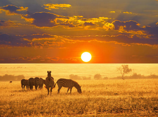 Africa_honeymoon_sunset.jpg