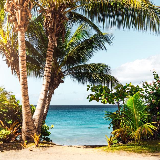 rincon_puerto_rico-beach-1.jpg